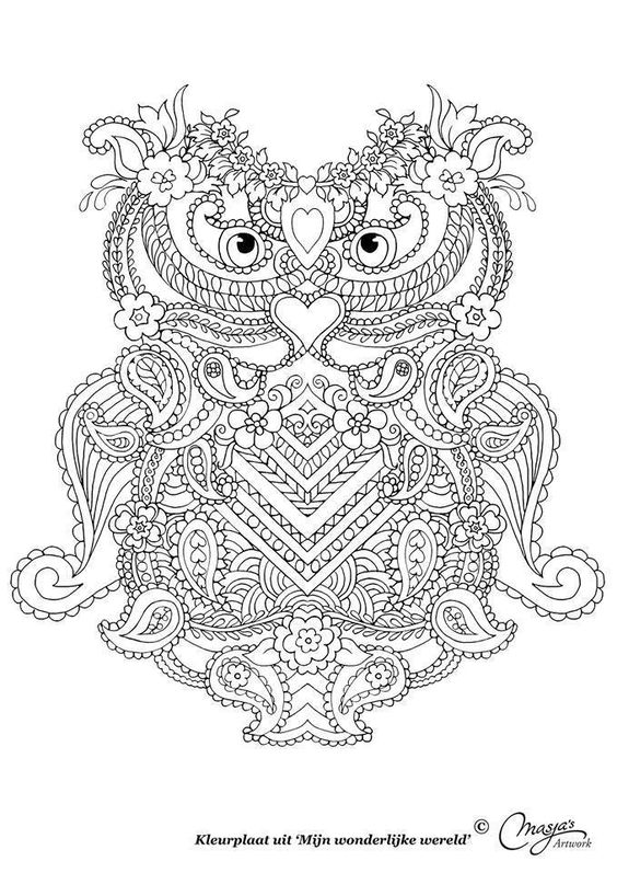 Coloriage chouette adulte et ado art therapy pinterest - Album coloriage adulte ...
