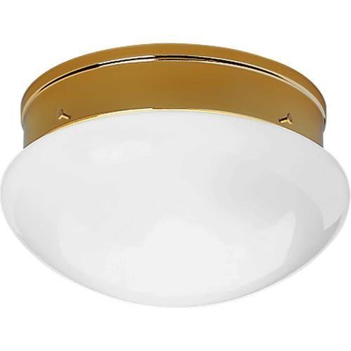 Progress Lighting P3410 Fitter 9 5 Inch 2 Light Flush Mount In 2020 Progress Lighting Ceiling Fixtures Ceiling Lights
