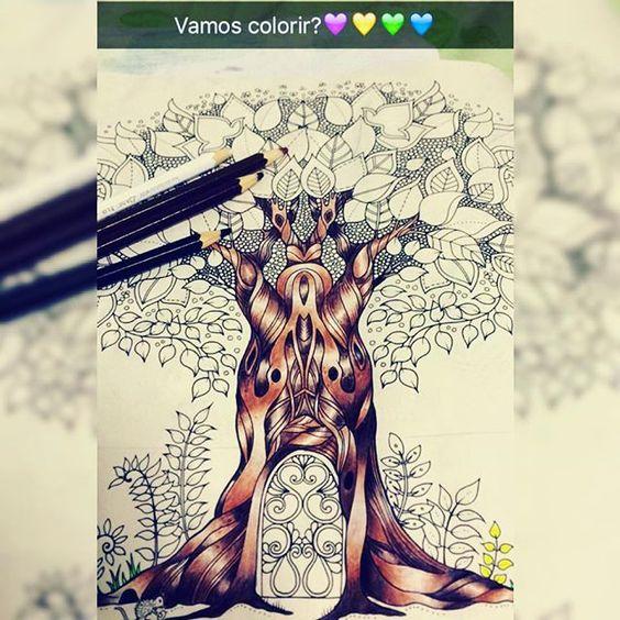 Hora de pintar!!! Acompanhem todo o processo pelo meu  snap: dianamoraesdkpm  #arvore #encantada #folhas #florestaencantada #frutinhas #noite #livrodecolorir #johannabasford #meucolorido #antiestresse  #amopintar #20likes #follow4follow #like4like #instalike #coloringbookbr #editorasextante #instadaily #followme  #instagood #colorfull #follow #webstagram #florestaencantadadkpm #likeforlike #instalove #instaDKPM #instapopular #instapic #trocolikes  @coolorindo @reinoanimaltop @siaofon_chang…