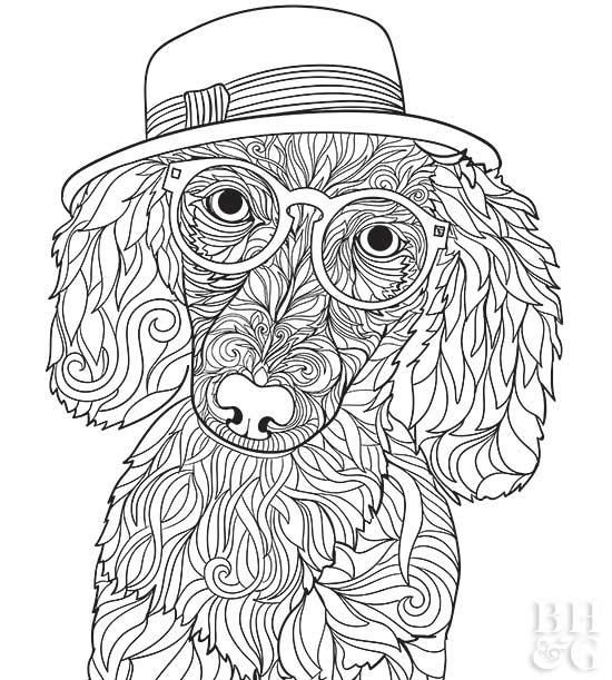 Here Are 24 Free Pet Coloring Pages To Help You Relax Dog Coloring Page Puppy Coloring Pages Dog Coloring Book