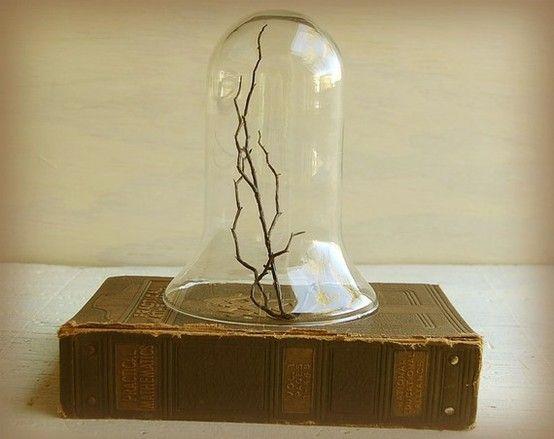 Glass globe Display - Google Search