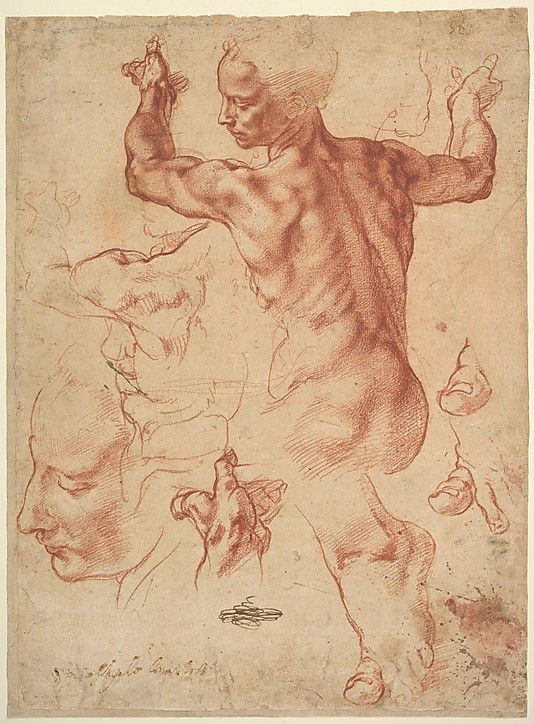 Happy Birthday Michelangelo! This is the most magnificent drawing by Michelangelo in the United States, held by  the MET in NYC.  Entitled: Studies for the Libyan Sibyl (recto); Studies for the Libyan Sibyl and a small Sketch for a Seated Figure (verso)
