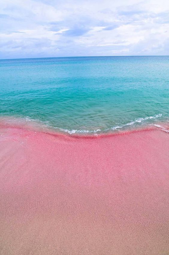 Pink Beach in Barbuda #LoveAntiugaBarbuda