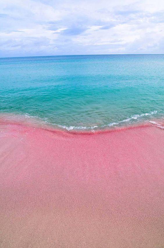 Pink Beach in Barbuda #LoveAntiugaBarbuda