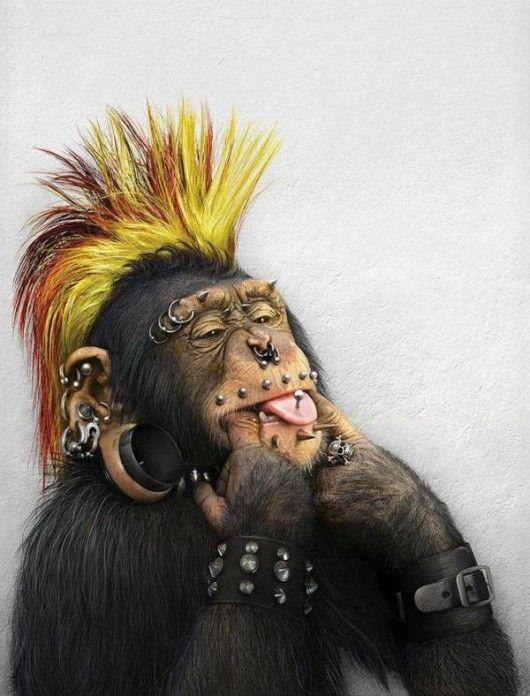 http://piccsy.com/2011/11/monkey-characters-by-julia-malanina-2/