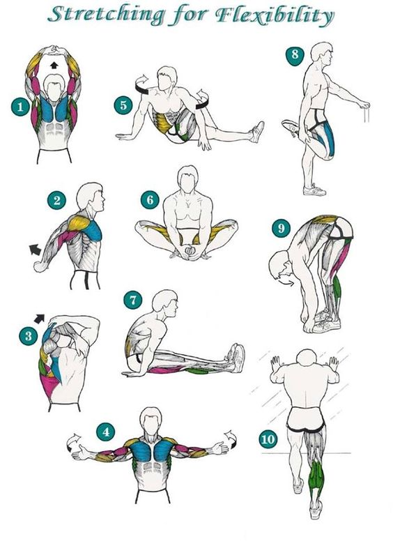 Stretching for flexibility Flexibility is important for Muaythai to use weapons or avoid opponent's weapons.