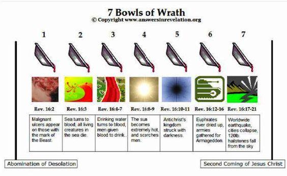 7 bowl judgements
