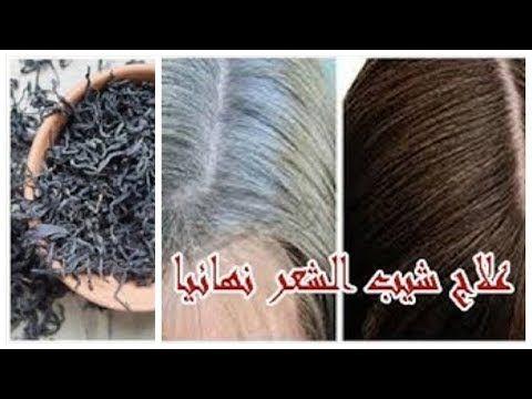 علاج شيب الشعر نهائيا وللأبد من غير صبغة في نص ساعه التخلص من الشعر الابيض نهائيا