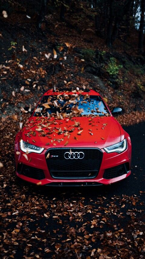 Pin By Kai Dragonoid On Wallpaper 4k For The Phone Audi Cars Red Audi Car Wallpapers