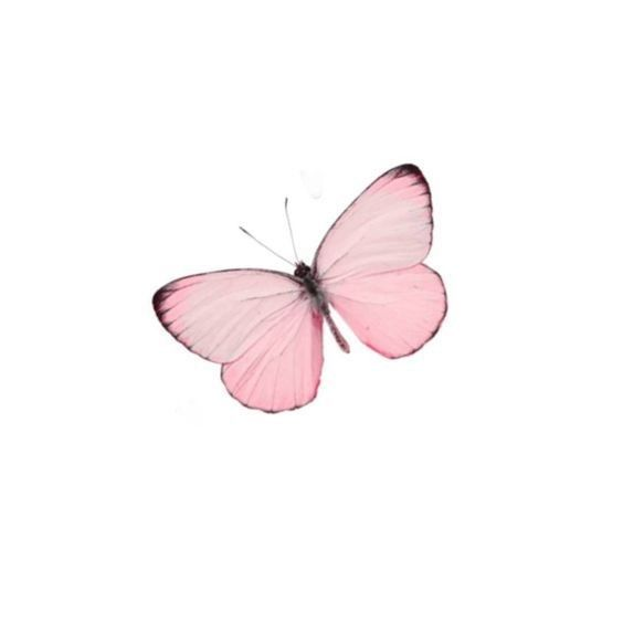 Pin By Mj Solves On Geranium Cottage Pink Aesthetic Wings Art Pink Fashion