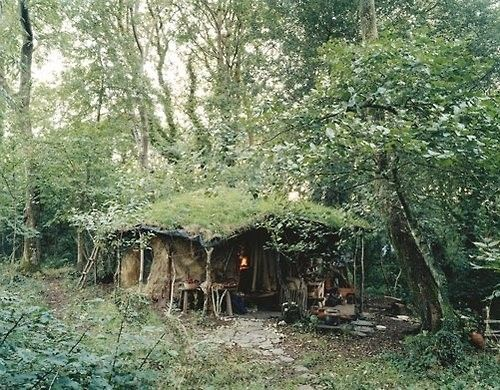 camouflaged, off grid living - I bet this place doesn't show up on google earth ...