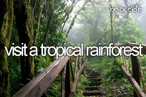 While you're at it, why not visit Daintree Rainforest, the oldest rainforest in the world? http://www.arcadia.edu/abroad/study-abroad-in-australia/
