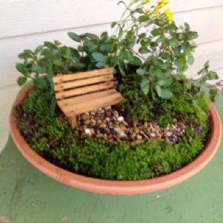 made a little dish garden for the deck big and little garden
