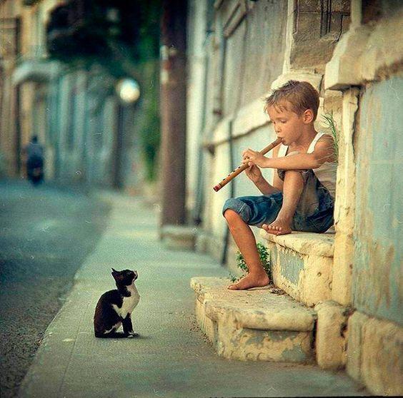 Criança mostrando seus dotes musicais para um público especial: um gatinho curioso.