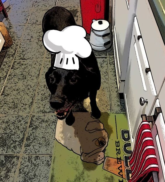 Chef's assistant