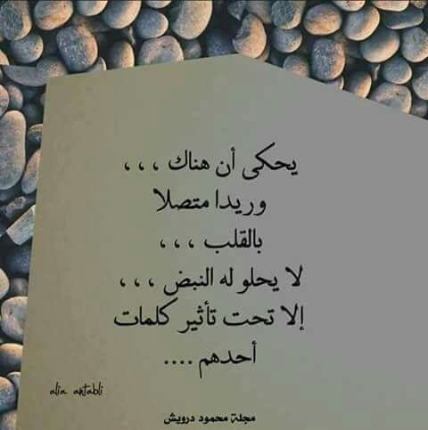 كبرياء انثى مجروحة Love Words Romantic Quotes Arabic Quotes