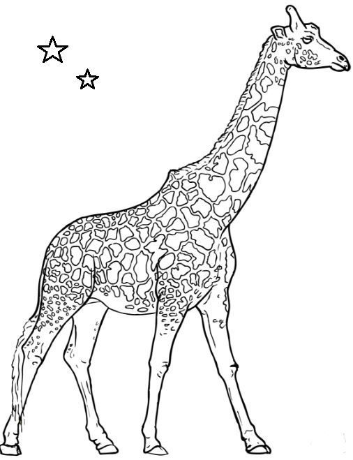 Giraffe Coloring Page Elephant Coloring Page Giraffe Coloring Pages Animal Coloring Pages