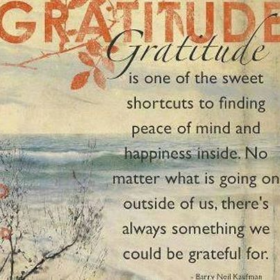 Gratitude is one of the sweet shortcuts to finding peace of mind and happiness inside. No matter what is going on outside of us, there's always something we could be grateful for.