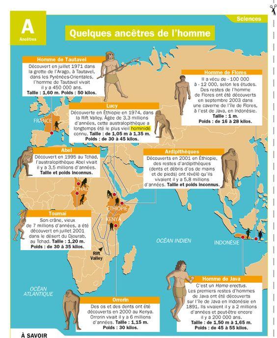 Fiche exposés : Quelques ancêtres de l'homme