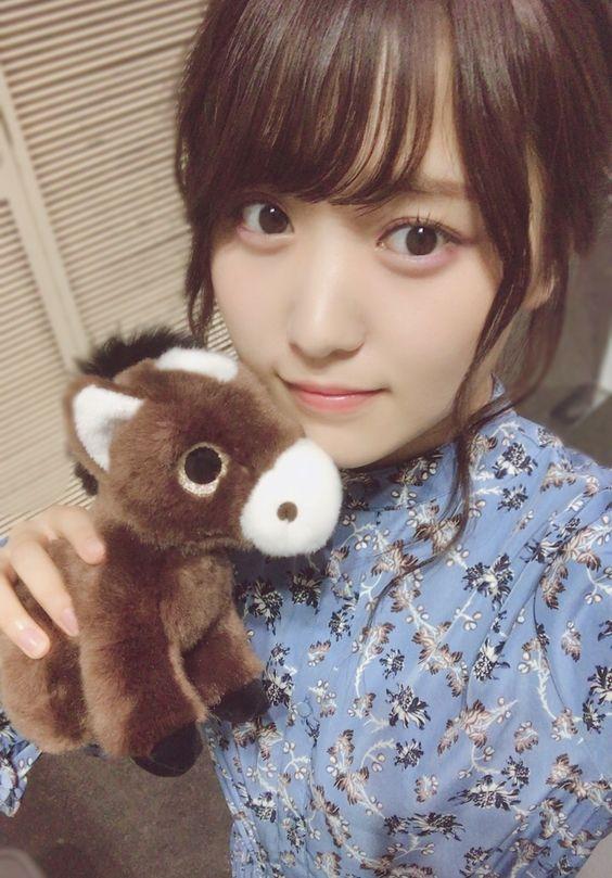 馬のぬいぐるみと菅井友香
