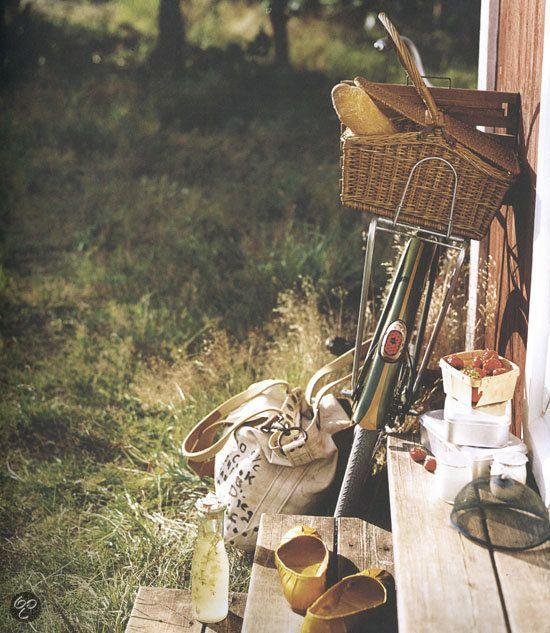 Picknicken/Picknick.