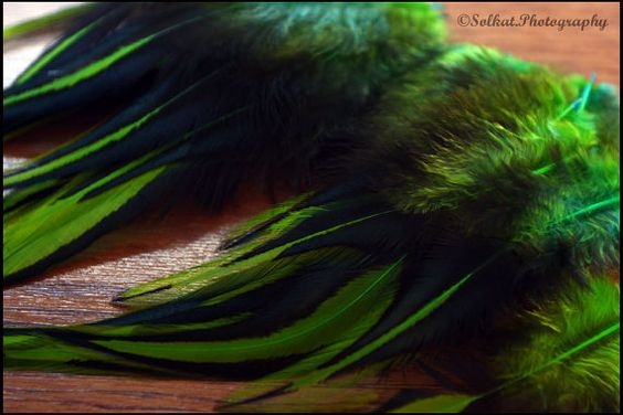 Hey, I found this really awesome Etsy listing at https://www.etsy.com/listing/112581297/green-laced-rooster-saddle-feather