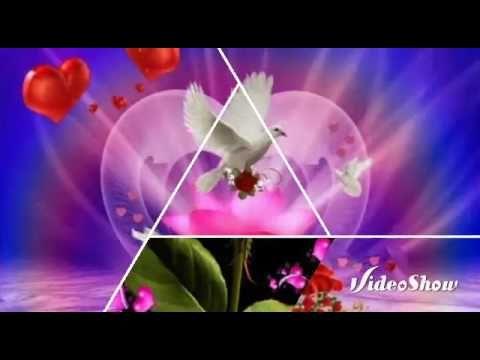 Quiereme Como Te Quiero Grupo Mandingo Youtube Videos De Musica Canciones Románticas Canciones
