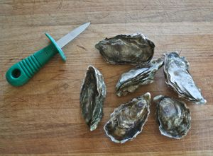 Shucking (or opening) oysters is a snap once you get the hang of it - see how easy it can be with this step-by-step photo guide to shucking oysters.: Start With Fresh, Raw Oysters for Shucking