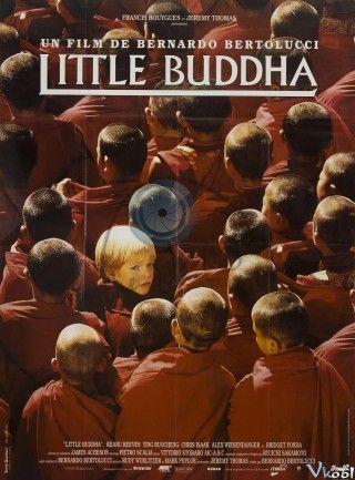 Vị Tiểu Phật - HD