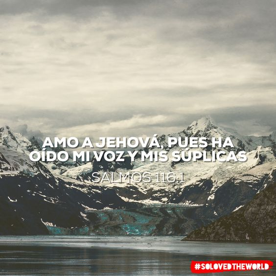 Amo a Jehová, pues ha oído Mi voz y mis súplicas Salmos 116:1 #jesus #god #gospel #bible #love #solovedtheworld