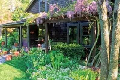 Herbs that will grow in shade or part shade