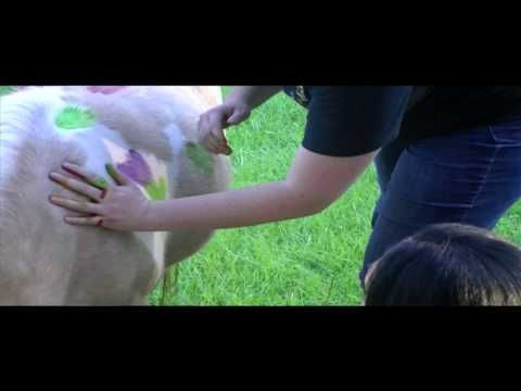 One of our favorite #EquineTherapy activities is War Pony Painting - watch the video here: http://ow.ly/Dfi7r #EatingDisorderTreatment