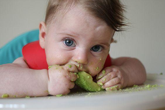 BLW - Baby Led Weani