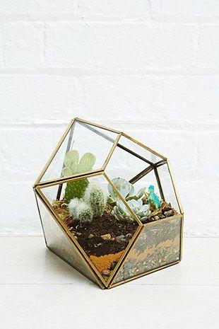 Urban Grow - Terrarium géométrique doré