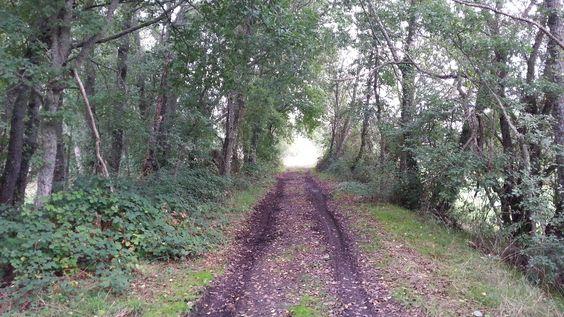 Paisaje ruta de las vegas del Limia