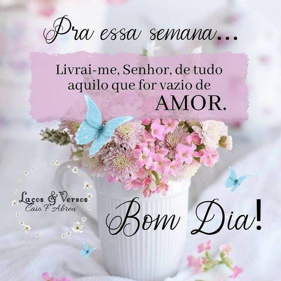 #Bomdia #felizsemana #senhor #amor #mensagens #reflexao #frases #mensagenslacosversosoficial ðŸ™ðŸ»ðŸ'—🌸ðŸƒ