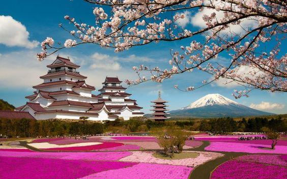 Japanese Castle Mount Fuji Beautiful Landscape Wallpaper