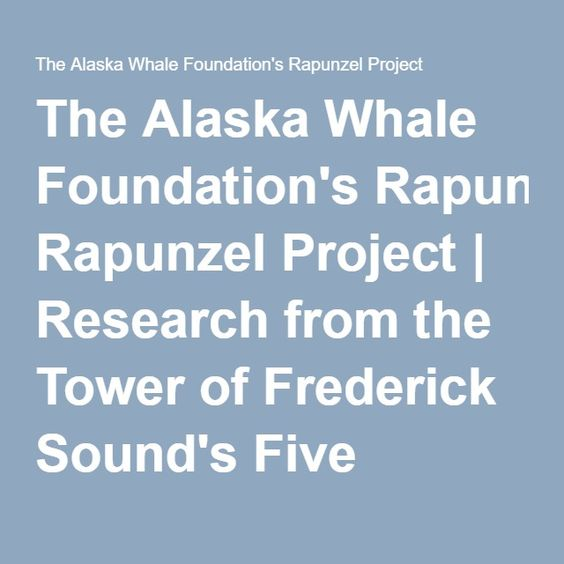 The Alaska Whale Foundation's Rapunzel Project | Research from the Tower of Frederick Sound's Five Finger Lighthouse