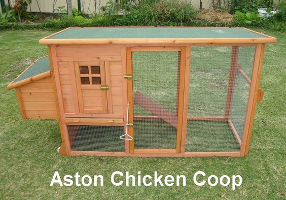 Small chicken coop plans the quality material to build a for Portable coop