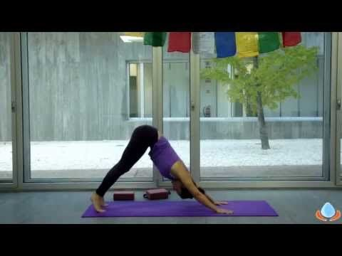 Clase completa de yoga dinámico para principiantes en español - YouTube