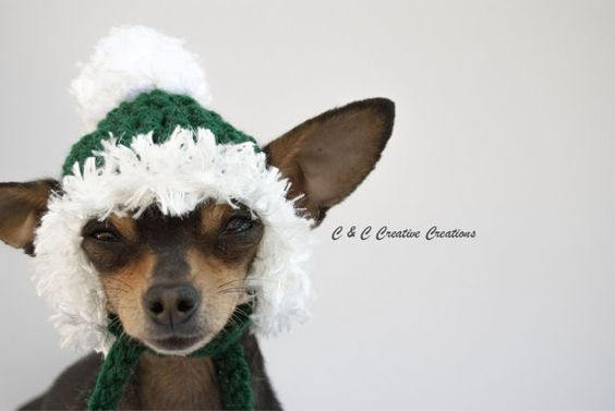 Christmas Dog Hat - Green - Cat Hat - Pet Hat - Dog Beanie - Christmas - Holiday - Photo Prop - Hand Crochet - Made to Order