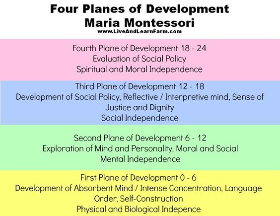 four planes of development montessori essay After years of observation, montessori concluded there are four distinct planes of  development that everyone must pass through on their way to.