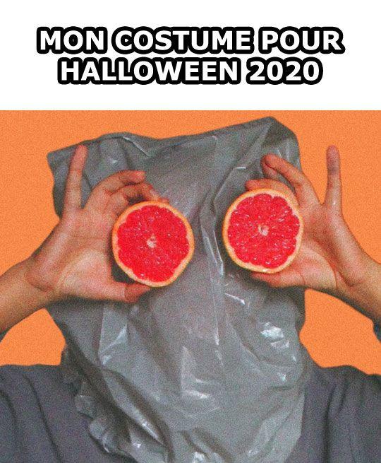 Mon costume pour Halloween 2020 – image drole humour memes