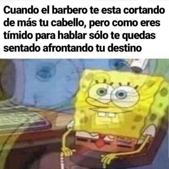 Soy Un Cobarde Y Mi Pelo Lo Paga Funny Spongebob Memes Spongebob Funny Funny Relatable Memes
