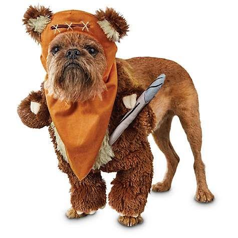 Star Wars Ewok Illusion Dog Costume Petco Ewok Dog Costume