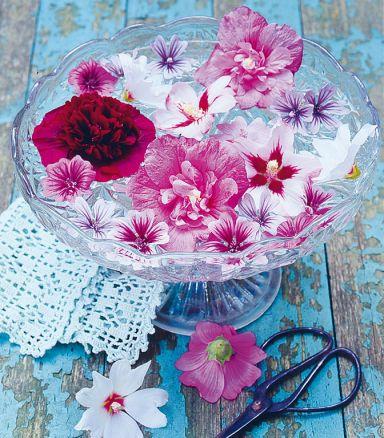 Kristallschale mit Wasser und Blüten