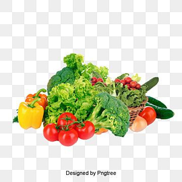 Vegetable Vegetables Vegetable Vector Png Transparent Clipart Image And Psd File For Free Download Mixed Vegetables Organic Fruits And Vegetables Fresh Fruits And Vegetables