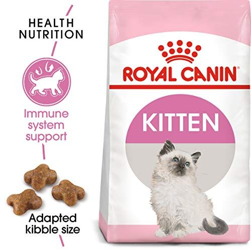 Royal Canin Feline Health Nutrition Dry Food For Young Kittens 7 Pound Bag Health Nutrition Dry Cat Food Kitten Food