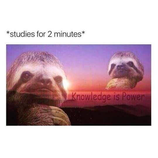 Pin By Very Random On A Hoot School Memes Memes Knowledge Is Power