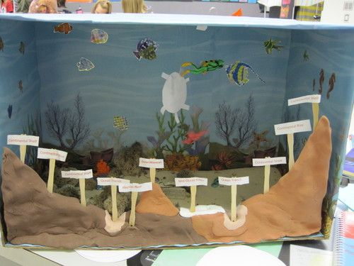 Ocean Floor Project | Classroom Ideas | Pinterest | Models ...